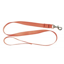 LAISSE EUROPARM SANGLE NYLON FLUO 1,20M ORANGE