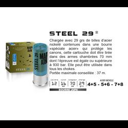 MARY STEEL 29 PB4+5 X25