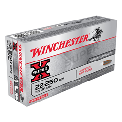 WINCHESTER 22 250 55GR X20